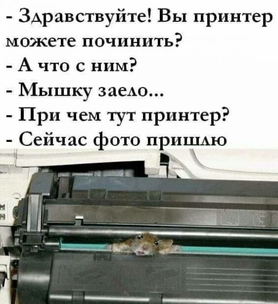 https://2019.f.a0z.ru/cache/12/800x600/08-8121217-printer-i-myshka.jpg